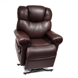 golden power cloud lift chair power pillow