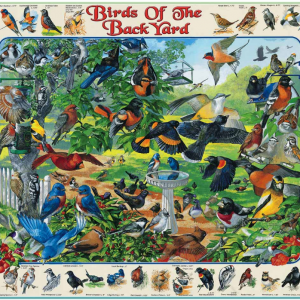 Birds of the Backyard Puzzle 1000 piece, picture of box with finished puzzle on front.
