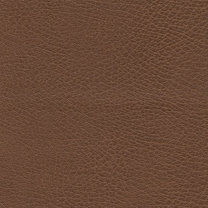 Golden Bridle Fabric swatch. A smooth light brown fabric.