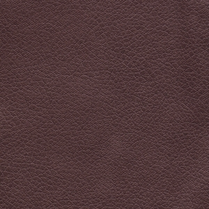 Golden Coffee Bean Fabric Swatch. An smooth dark brown.