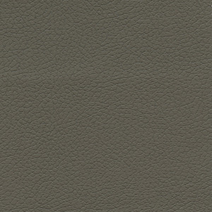 Golden Shiitake Fabric swatch. A smooth olive-colored fabric.